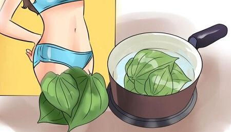 phuong-phap-chua-viem-phu-khoa-bang-la-trau-khong